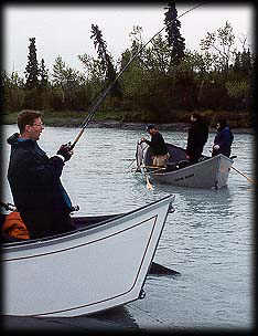 One coming out of the net, another in the works ... Kasilof River Salmon Fishing