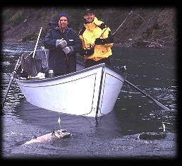 Doubleheader on the Hoh ... Forks, Washington salmon fishing guides. Fishing near Seattle. Seattle fishing guides
