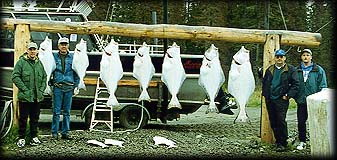 An 'average' day of halibut fishing