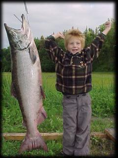 A Kasilof king outweighing the angler ... Jordan weighs 40, the fish 41!